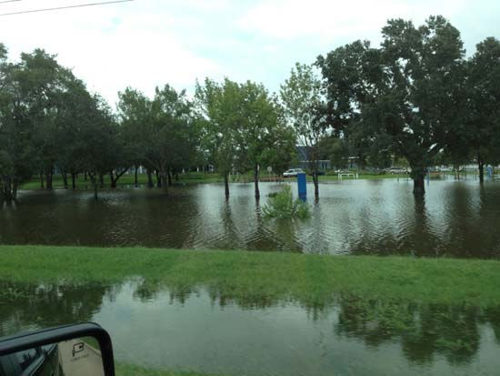 These are just some of the photos sent in by you of the flooding in southeast Texas. We&#39;ve got all of them at http:&#47;&#47;iwitness.abc13.com. And if you have photos or videos, send them to us at news@abc13.com <span class=meta>(Photo&#47;iWitness Reports)</span>