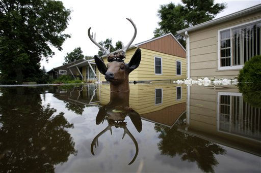 "<div class=""meta ""><span class=""caption-text "">The head of a lawn deer remains above the flood waters from the Souris River in an evacuated western neighborhood of Minot, N.D. Friday, June 24, 2011.  About one-fourth of the city's 40,000 residents have evacuated their homes.   (AP Photo/ Charles Rex Arbogast)</span></div>"