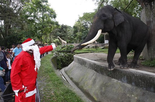 "<div class=""meta ""><span class=""caption-text "">A zoo employee in Santa costume reaches out to touch an elephant at National Zoo in Kuala Lumpur, Malaysia, Saturday, Dec. 24, 2011. (AP Photo/Lai Seng Sin) (AP Photo/ Lai Seng Sin)</span></div>"