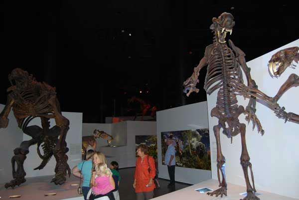 "<div class=""meta image-caption""><div class=""origin-logo origin-image ""><span></span></div><span class=""caption-text"">The Houston Museum of Natural Science's $85 million Hall of Paleontology opens to the public on June 2. For more info, visit HMNS.org. (KTRK Photo)</span></div>"