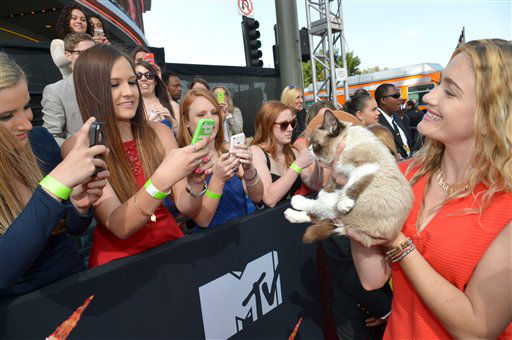 "<div class=""meta image-caption""><div class=""origin-logo origin-image ""><span></span></div><span class=""caption-text"">Grumpy Cat arrives at the 2014 MTV Movie Awards, on Sunday, April 13, 2014 in Los Angeles.  (Photo by John Shearer/Invision for MTV/AP Images)</span></div>"