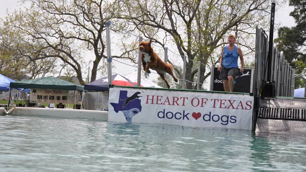 "<div class=""meta image-caption""><div class=""origin-logo origin-image ""><span></span></div><span class=""caption-text"">'Paws in the Park' was held in Pearland to support animal adoption over the weekend (Photo by: Blanca Beltran)  (KTRK)</span></div>"