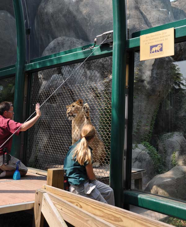 Cast members from CATS visit the big cat exhibit at the Houston Zoo Friday.  Zoo goers got to mingle with the cast and get face painting for the kids and learn all about the big cats at the zoo. <span class=meta>(KTRK)</span>