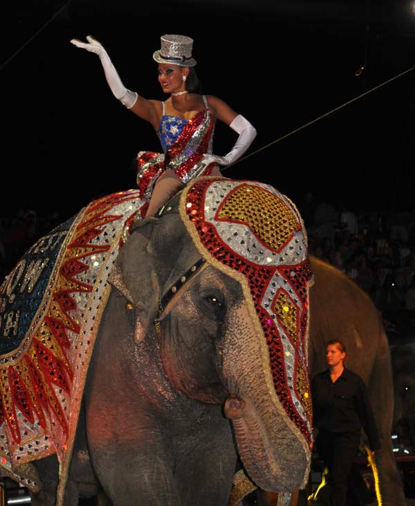 Images from  the Ringling Brothers and Barnum  &#38; Bailey Circus show at Reliant Stadium in Houston <span class=meta>(KTRK&#47;Blanca Beltran)</span>
