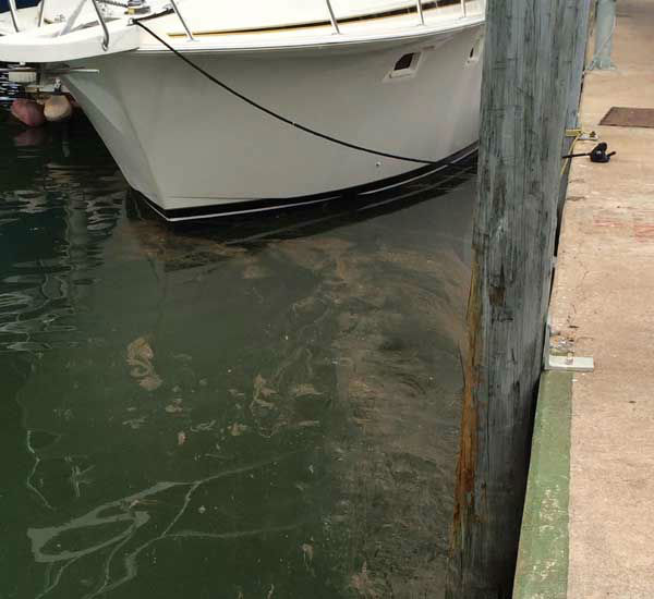 These are photos viewers sent to us at news@abc13.com of the oil spill in the Ship  Channel <span class=meta>(Photo&#47;iWitness Reports)</span>