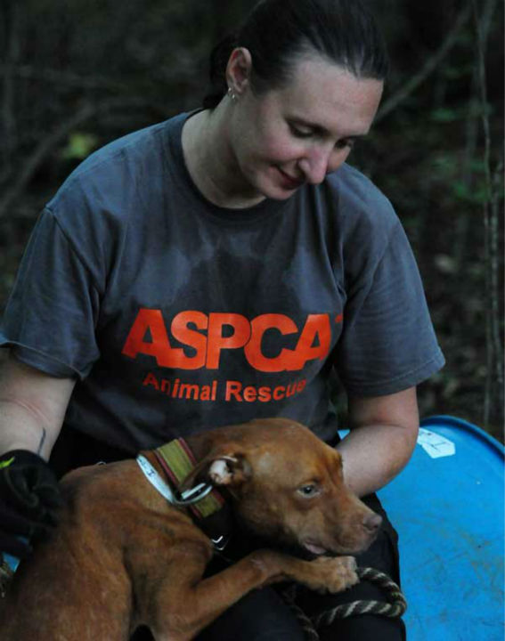 "<div class=""meta image-caption""><div class=""origin-logo origin-image ""><span></span></div><span class=""caption-text"">These photos of the dogs in Alabama were provided to us by the ASPCA.  They say 114 dogs were seized in the raid Friday (Photo/ASPCA)</span></div>"