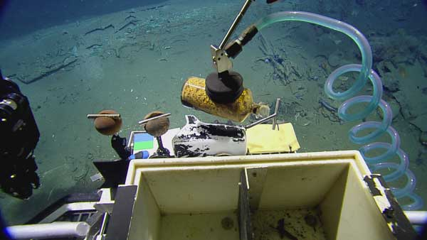 The Remotely Operated Vehicle &#40;ROV&#41; Hercules gently recovers a medicine bottle filled with ginger, a seasickness remedy, from an early 19th century shipwreck recently documented and partially excavated in the Gulf of Mexico in more than 4,300 feet of water.  The wreck is one of three sites investigated by scientists from the Bureau of Ocean Energy Management, the National Oceanic and Atmospheric Administration, the Bureau of Safety and Environmental Enforcement, the Texas Historical Commission, and the Meadows Center for Water and the Environment at Texas State University.  The project was funded by donations and sponsorships arranged by the Meadows Center, and conducted in partnership with the Ocean Exploration Trust at the University of Rhode Island on board the Exploration Vessel Nautilus. <span class=meta>(Ocean Exploration Trust&#47;Meadows Center for Water and the Environment, TSU)</span>
