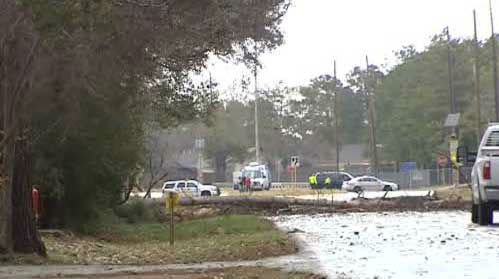 "<div class=""meta image-caption""><div class=""origin-logo origin-image ""><span></span></div><span class=""caption-text"">Detectives in northwest Harris County investigate a weather-related accident where a young man trying to move a downed tree was killed by another tree that fell on top of him.  (KTRK Photo)</span></div>"