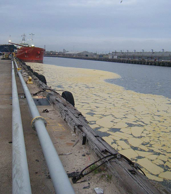 About 250,000 gallons of animal fat spilled from a tank, with about 15,000 entering the Houston Ship Channel through a storm drain <span class=meta>(Photo&#47;US Coast Guard)</span>