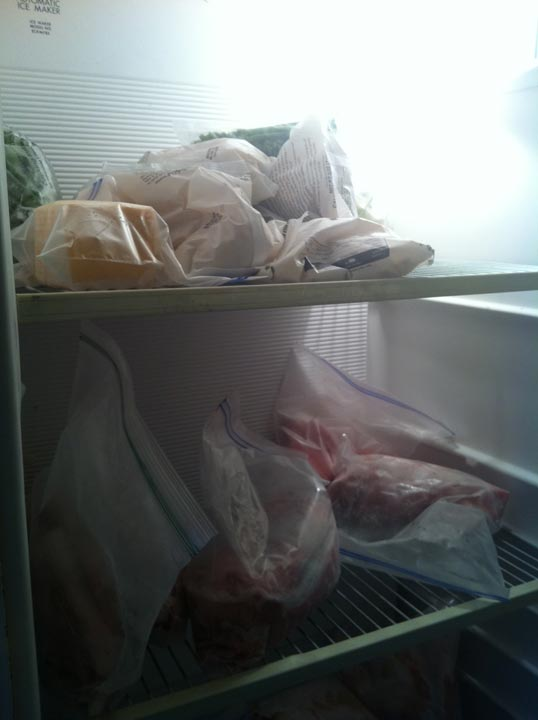 The great-aunt of the siblings living on a bus near Splendora showed Eyewitness News their freezer, demonstrating the availability of the food she prepares for the children every day. <span class=meta>(Samica Knight)</span>