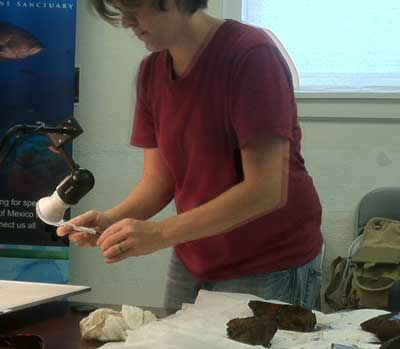 State archeologist examining the remains of musket stocks recovered from beneath 4000 feet of water in the Gulf <span class=meta>(Photo&#47;ABC13)</span>
