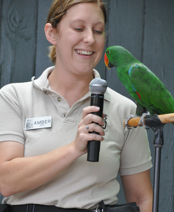 "<div class=""meta ""><span class=""caption-text "">There were activities, special Meet the Keeper Talks and enrichment demonstrations held  (Blanca Beltran/KTRK)</span></div>"