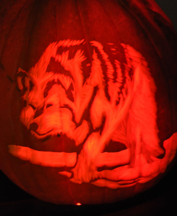 Images from the 14th Annual Pumpkin Carving...