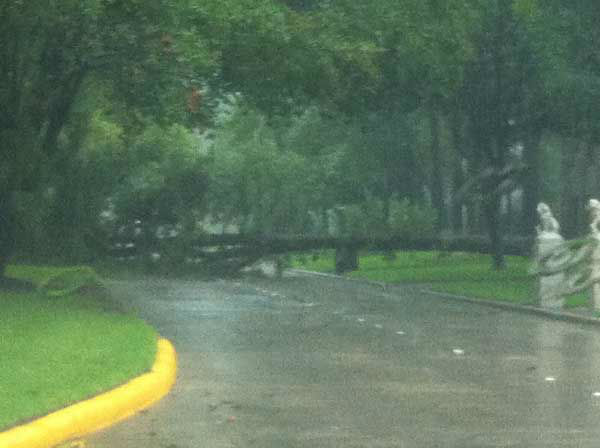 "<div class=""meta image-caption""><div class=""origin-logo origin-image ""><span></span></div><span class=""caption-text"">Hail, flooding and lots of lightning were reported all over the Houston area as a weather system moved across southeast Texas Saturday. (KTRK-TV/iWitness)</span></div>"