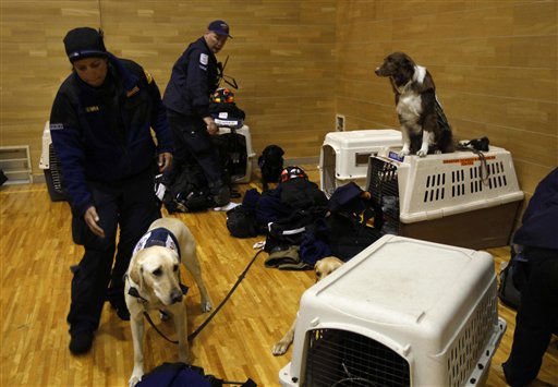 Rescue dogs are tended to by their handlers from the Los Angeles County search and rescue team in a gymnasium being set up as their base after arriving at the Setamai school in Sumita, northern Japan, Monday, March 14, 2011. Two search and rescue teams from Fairfax County, Virginia, and Los Angeles County in the U.S. and a team from the U.K. with combined numbers of around 225 personnel have arrived in northern Japan to help in the aftermath of the earthquake and tsunami. &#40;AP Photo&#47;Matt Dunham&#41; <span class=meta>(AP Photo&#47; Matt Dunham)</span>