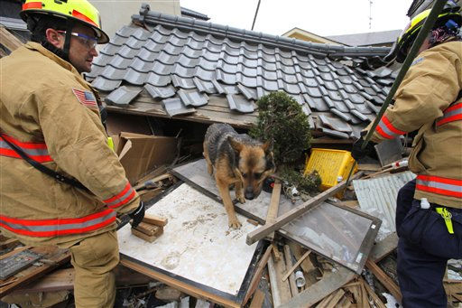 "<div class=""meta ""><span class=""caption-text "">Members of the U.S. rescue team with a sniffer dog search for victims in the tsunami-hit area in Ofunato, Iwate Prefecture, Japan, Tuesday, March 15, 2011, four days after the disaster. (AP Photo/Itsuo Inouye) (Photo/Itsuo Inouye)</span></div>"