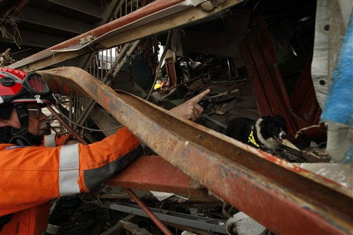 "<div class=""meta ""><span class=""caption-text "">British search and rescue team member Rob Furniss and his search dog Byron try to find if there are any trapped people still alive in a building in Ofunato, Japan, Tuesday, March 15, 2011. Two search and rescue teams from the U.S. and a team from the U.K. with combined numbers of around 220 personnel, searched damaged areas of the town of Ofunato for trapped survivors Tuesday in the aftermath of the earthquake and tsunami. (AP Photo/Matt Dunham) (Photo/Matt Dunham)</span></div>"