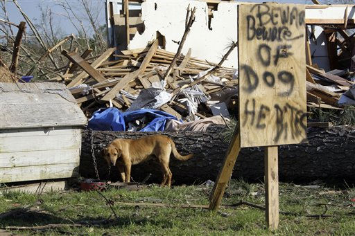 A dog stares down interlopers  outside the remains of a home in Phil Campbell, Ala., Thursday, April 28, 2011. Wednesday&#39;s tornado touchdown destroyed much of the small community and caused several deaths. The dog spent the night on guard with its owner, protecting the remains of the destroyed house. &#40;AP Photo&#47;Rogelio V. Solis&#41; <span class=meta>(AP Photo&#47; Rogelio V. Solis)</span>
