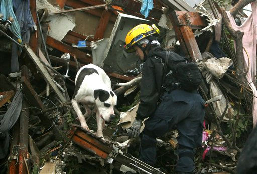 Kathleen Kelsey, a canine rescue specialist with the Missouri Task Force One search-and-rescue team, guides a live-find dog named ChicoDog through the wreckage of a public housing complex in Joplin, Mo., Monday, May 23, 2011. A destructive tornado swept through Joplin on Sunday evening, killing at least 116 and injuring hundreds more. &#40;AP Photo&#47;Mark Schiefelbein&#41; <span class=meta>(AP Photo&#47; Mark Schiefelbein)</span>