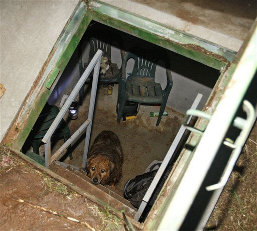 "<div class=""meta image-caption""><div class=""origin-logo origin-image ""><span></span></div><span class=""caption-text"">Duke looks up from a storm shelter at the Robertson home in Piedmont, Okla., Tuesday, May 24, 2011. Duke was actually in the bathtub during the start of the tornado, and later found running in a pasture.  Violent thunderstorms roared across middle America on Tuesday, killing seven people in two states, with several tornadoes touching down in Oklahoma. (AP Photo/Sue Ogrocki) (AP Photo/ Sue Ogrocki)</span></div>"