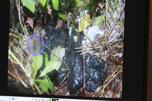 EDS NOTE: AT THE DIRECTION OF JUDGE BELVIN PERRY, THE PORTIONS OF THIS PHOTO THAT DEPICT HUMAN REMAINS HAVE BEEN DIGITALLY OBSCURED - A photo entered in evidence on a courtroom monitor shows the location of a child&#39;s skull found near the Anthony home, during the Casey Anthony trial at the Orange County Courthouse on Thursday, June 9, 2011, in Orlando, Fla. The photo is one in a series of photos taken at the crime scene where the remains of Caylee Anthony were found. Her mother, Casey Anthony, is charged with killing her 2-year old daughter in 2008. &#40;AP Photo&#47;Joe Burbank, Pool&#41; <span class=meta>(AP Photo&#47; Joe Burbank)</span>