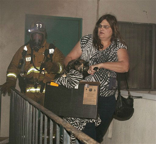 A Los Angeles Fire Department firefighter assists a woman and her cat out of her apartment as multiple cars burn in a carport in the Sun Valley neighborhood of Los Angeles on Saturday, Dec. 31, 2011. For the third night in a row, a rash of arson fires has sent firefighters scrambling to extinguish car fires in various neighborhoods in Los Angeles. Most of the fires on this night occurred in the San Fernando Valley. &#40;AP Photo&#47;Dan Steinberg&#41; <span class=meta>(AP Photo&#47; Dan Steinberg)</span>