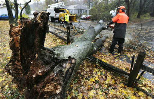 A worker clears a tree dropped by the high winds prior to landfall of Hurricane Sandy in Shrewsbury, Mass., Monday, Oct. 29, 2012. Hurricane Sandy continued on its path Monday, as the storm forced the shutdown of mass transit, schools and financial markets, sending coastal residents fleeing, and threatening a dangerous mix of high winds and soaking rain.?  <span class=meta>(AP Photo&#47; Charles Krupa)</span>