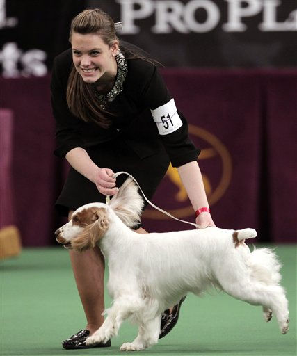 Ania Gabrielle Kelly smiles with her dog Winfree&#39;s Do You Believe in Magic after winning Best Junior at the 136th annual Westminster Kennel Club dog show in New York, Tuesday, Feb. 14, 2012.  <span class=meta>(AP Photo&#47; Seth Wenig)</span>