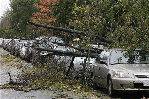 Trees lie fallen across parked cars in the Brooklyn borough of New York the morning after superstorm Sandy made landfall, Tuesday, Oct. 30, 2012. A record storm surge that was higher than predicted along with high winds damaged the electrical system and plunged millions of people into darkness. Utilities say it could be up to a week before power is fully restored.   <span class=meta>(AP Photo&#47; Mark Lennihan)</span>