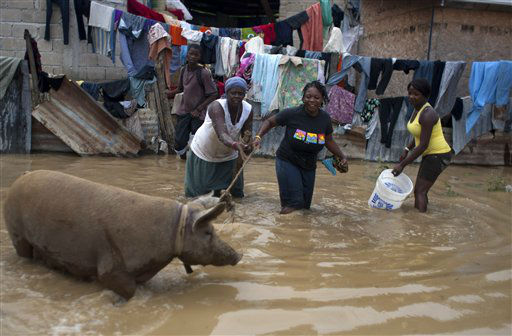 "<div class=""meta ""><span class=""caption-text "">Residents rope a pig on a flooded street after the passing of Tropical Storm Isaac in Port-au-Prince, Haiti, Sunday Aug. 26, 2012. The death toll in Haiti from Tropical Storm Isaac has climbed to seven after an initial report of four deaths, the Haitian government said Sunday.  (AP Photo/ Dieu Nalio Chery)</span></div>"