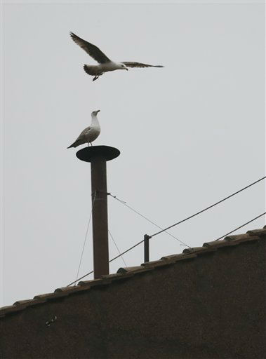 "<div class=""meta image-caption""><div class=""origin-logo origin-image ""><span></span></div><span class=""caption-text"">A seagull sits on the chimney on the roof of the Sistine Chapel while another flies overhead in St. Peter's Square during the second day of the conclave to elect a new pope at the Vatican, Wednesday, March 13, 2013.  (AP Photo/ Dmitry Lovetsky)</span></div>"