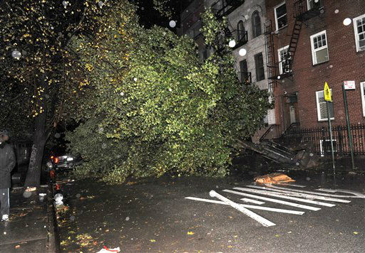 An uprooted tree blocks 7th street near Avenue D in the East Village as a result of high winds from Sandy, Monday, Oct. 29, 2012, in New York.  <span class=meta>(AP Photo&#47; Louis Lanzano)</span>