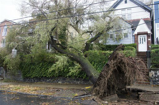 "<div class=""meta ""><span class=""caption-text "">A fallen tree brings down power lines in the aftermath of superstorm Sandy on Tuesday, Oct. 30, 2012 in Jersey City, NJ. (AP Photo/Charles Sykes) (Photo/Charles Sykes)</span></div>"