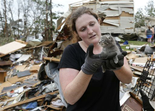 Maeghan Hadley, of One Day Ranch pet rescue, checks over a kitten pulled from under the rubble of a mobile home destroyed by Sunday&#39;s tornado in the Steelman Estates Mobile Home Park, near Shawnee, Okla., Monday, May 20, 2013.   <span class=meta>(AP Photo&#47; Sue Ogrocki)</span>