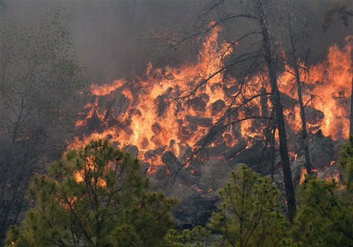 This photo provided by Texas Parks and Wildlife shows a fire burning in Bastrop State Park in Bastrop, Texas. More than 1,000 homes have been destroyed in at least 57 wildfires across rain-starved Texas, most of them in one devastating blaze near Austin that is still raging out of control, officials said Tuesday. &#40;AP Photo&#47;Texas Parks and Wildlife Foundation, Chase A. Fountain&#41; <span class=meta>(AP Photo&#47; Chase A. Fountain)</span>