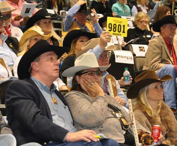 From the carnival to the art auction to livestock and more, this is Rodeo time in Houston and there&#39;s something at Reliant for everyone <span class=meta>(Photo&#47;Robbie Stevens)</span>