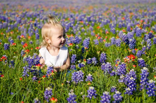 These are some of the photos you've been sending us of the bluebonnets in bloom. Email your pics to us at news@abc13.com or upload them here.