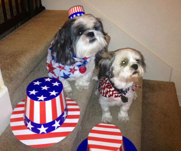 These are photos you&#39;ve been sending to us, showing how you&#39;re celebrating our independence around the Houston area.    If you&#39;ve got photos, send them to us at news@abc13.com and we&#39;ll post them all on our iWitness Reports page. <span class=meta>(Photo&#47;iWitness Reports)</span>