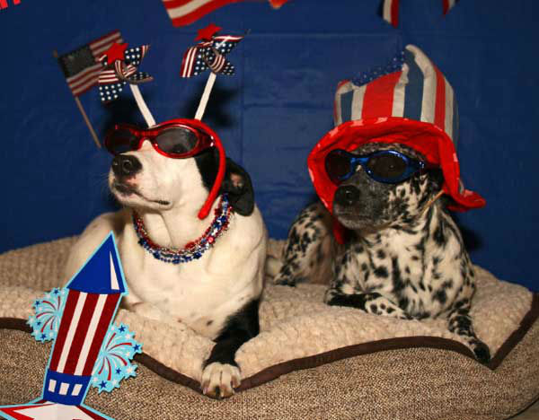 "<div class=""meta image-caption""><div class=""origin-logo origin-image ""><span></span></div><span class=""caption-text"">These are photos you've been sending to us, showing how you're celebrating our independence around the Houston area.    If you've got photos, send them to us at news@abc13.com and we'll post them all on our iWitness Reports page. (Photo/C@WILLIS)</span></div>"