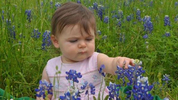 "<div class=""meta image-caption""><div class=""origin-logo origin-image ""><span></span></div><span class=""caption-text"">Bluebonnets and other Texas wildflowers make for a scenic backdrop for that perfect picture.  Check out some of yours!</span></div>"
