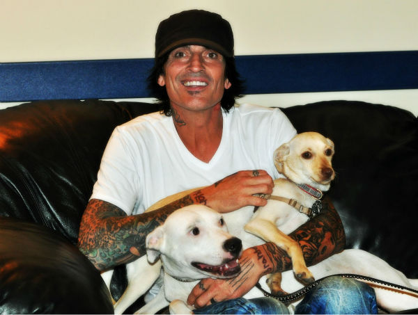 "<div class=""meta ""><span class=""caption-text "">Chance, a Montgomery County Animal Shelter foster dog, hangs out with rocker Tommy Lee backstage at the Cynthia Woods Mitchell Pavilion in The Woodlands. The smaller dog is Tommy Lee's pup, Bowie. 