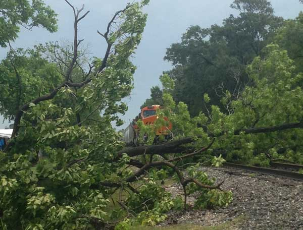 "<div class=""meta ""><span class=""caption-text "">One of our photographers, Willie Dixon, shot this photo of a tree down across railroad tracks at 70th and Capital in southeast Harris County (Willie Dixon)</span></div>"