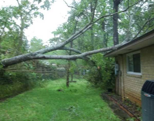 These just some of the photos that were sent to us by viewers through our iWitness Reports. All of them are here. If you shot photos or videos of the storms that raced through our area, email them to us at news@abc13.com   <span class=meta>(Photo&#47;iWitness Reports)</span>