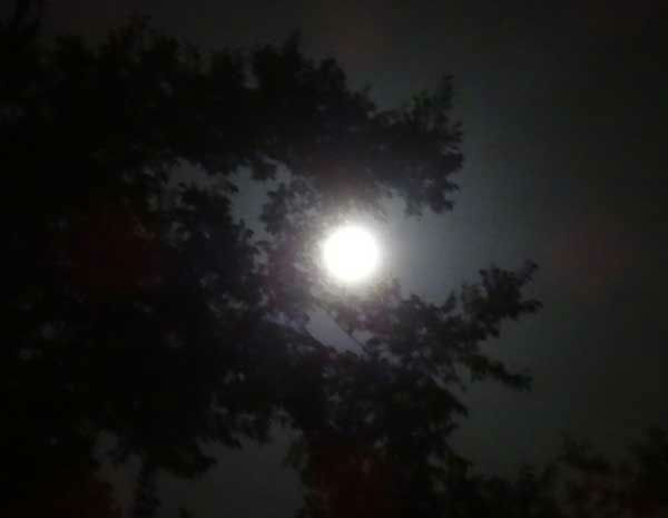 These are photos you&#39;ve been sending to us of the supermoon visibile across our area on Saturday night.  We&#39;ve got many more of your photos on our iWitness Reports section.  Send your supermoon photos to us at news@abc13.com. <span class=meta>(Photo&#47;iWitness Reports)</span>