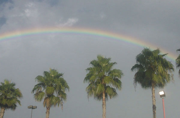 When the rain let up Friday, the rainbows were out.  These are some of the photos you captured and sent to us at news@abc13.com.   <span class=meta>(Photo&#47;iWitness Reports)</span>