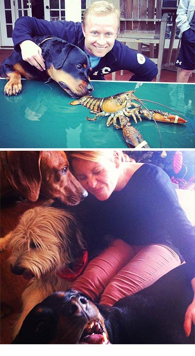 &#39;Full House&#39; and &#39;Make It or Break It&#39; alum Candace Cameron Bure shared this Instagram photo on Dec. 22, 2012 &#40;bottom&#41; , Tweeting: &#39;We&#39;re dog sitting!!!! Notice my &#39;Puppy Love&#39; co-star Bug-Z! And his sister Amara, along with my Samson.&#39;  Two days later, on Christmas Eve, she posted a photo of her husband Val and their dog and ... their main course &#40;top&#41;.  &#39;Look what Val&#39;s making for dinner,&#39; she Tweeted. &#39;And no, not our dog.&#39; <span class=meta>(instagram.com&#47;p&#47;TodXdHp8VK&#47; &#47; instagram.com&#47;p&#47;TjhmYTp8QK&#47; twitter.com&#47;candacecbure)</span>