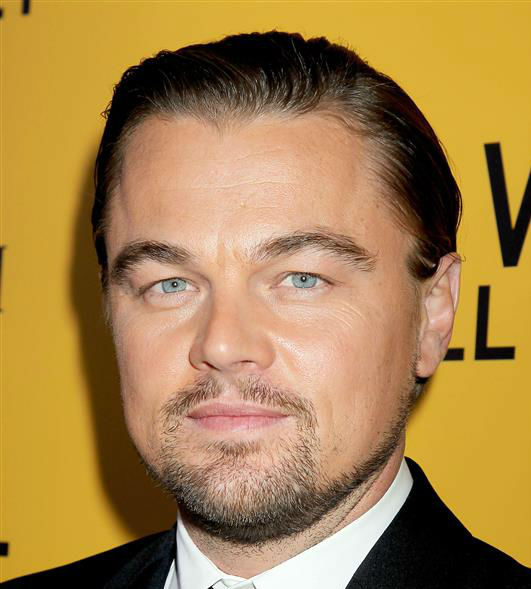 Leonardo DiCaprio attends the premiere of 'The Wolf of Wall Street' in New York on Dec. 17, 2013.
