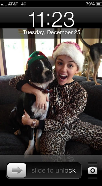 Miley Cyrus Tweeted this iPhone screenshot of her and one of her dogs on Dec. 25, 2012.  She has several and sadly, one of them, a terrier named Lila, passed away earlier this month. She Tweeted late on Christmas Day: &#39;Feelin hellllla hunggggryyyyy. nothing on TV. can&#39;t sleeeeep. Times like this is when I really miss Lila.&#39; <span class=meta>(twitter.com&#47;MileyCyrus&#47; pic.twitter.com&#47;fQBkMtKS)</span>