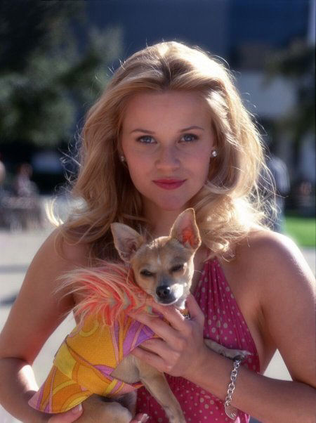 "<div class=""meta image-caption""><div class=""origin-logo origin-image ""><span></span></div><span class=""caption-text"">Reese has a bulldog named Frank Sinatra and a French bulldog named Coco Chanel, who she likes to put pearls on. Frank appeared in the Reese' movie 'Legally Blonde.' (Pictured: Reese Witherspoon appears in a still from her 2001 film, 'Legally Blonde.') (MGM/Tracy Bennett)</span></div>"