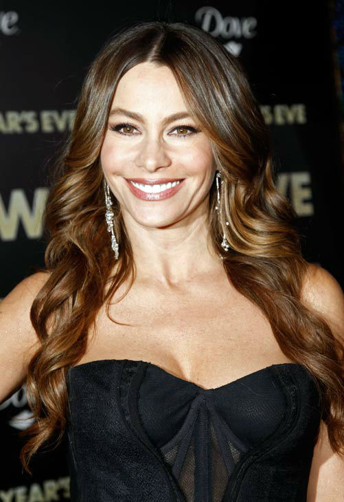 "<div class=""meta ""><span class=""caption-text "">In this Dec. 5, 2011 file photo, actress Sofia Vergara arrives at the premiere of 'New Year's Eve' in Los Angeles.  (AP Photo/ Matt Sayles)</span></div>"